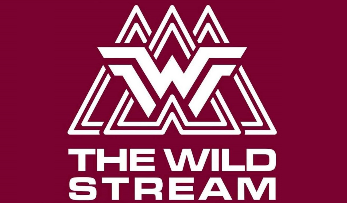 Fashion For Less  - The Wild Stream